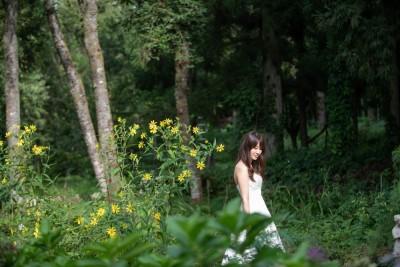 下田の森美術館