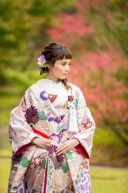 白紫裂取菊花文
